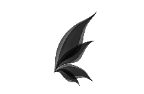 Transparent Butterfly Template Png Vector