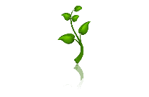 Transparent Cartoon Plant With Roots PNG