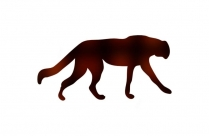 Leopard Png Clipart Image For Download