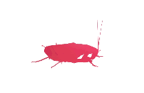 Colorful Cockroach Png Clip Art