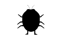 Insect Png Free Download