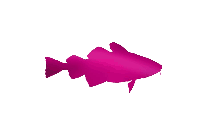 Cod Fish Clipart Png Black And White
