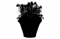 Transparent Colorful Outdoor Potted Plant Clipart