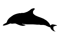 Transparent Dolphin Silhouette Png