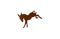 Transparent Donkey Rearing Up Png Clip Art