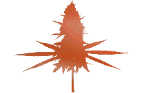 Transparent Drawn Cannabis Png Clipart Free Download
