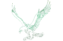 Eagle Outline Png Silhouette