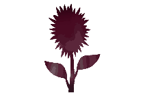 Transparent Fall Flower Clipart, Fall Flower Png Image