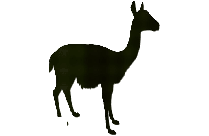 Tom Png Free Clipart