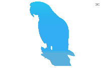 Transparent Macaw Parrot Art, Macaw Parrot Png Image