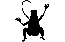 Transparent Monkey Sitting Png Vector