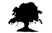Tree Png Hd Image, Transparent Tree Clipart