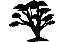 Palm Tree Png Clipart Image For Download
