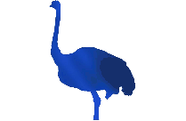 Transparent Ostrich Png Icon