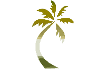 Summer Tree Png With Transparent Background