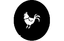Transparent Poultry Png For Free