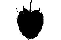 Transparent Raspberry Clipart, Raspberry Png Image