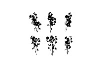 Transparent Simple Outline Flower Clip Art