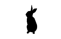 Wolf Howling Png Image With Transparent Background