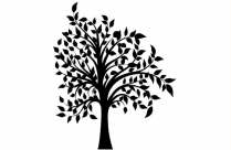 Tall Tree Png Free Clipart