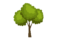 Transparent Tree Drawing Picture
