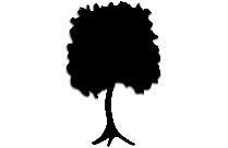 Cool Tree Png Clipart Download