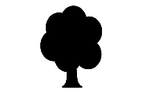 Tree Png With Transparent Background