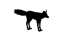 Transparent Wolf Png Icon