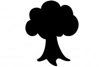 Apple Tree Png Drawing