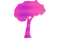 Tropical Tree Png Image Clipart