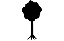 Bodhi Tree Image With Transparent Background