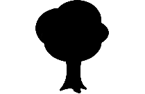 Transparent Tree Without Leaves Png Image