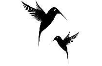 Twin Birds Flying Transparent Image