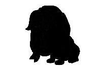 Transparent Pluto Dog Clipart, Pluto Dog Png Image