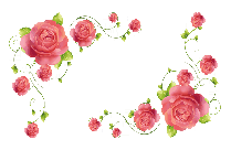 Valentine Flowers Png