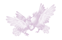 Cute Love Birds Transparent PNG