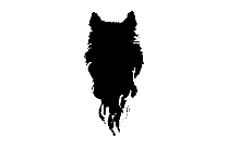Wolf Head Png Free Download