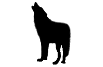 Wolf Png Clip Art, Transparent Wolf Png For Free