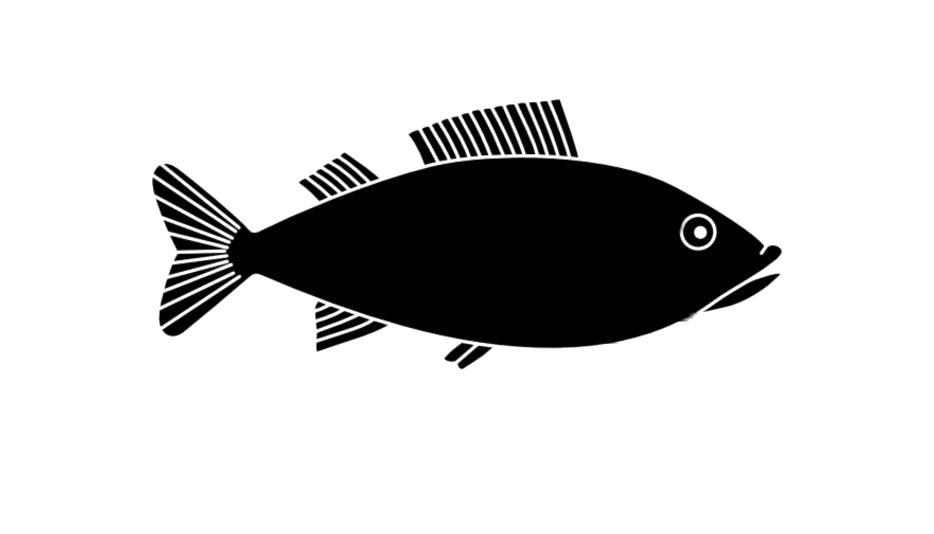 Fish PNG HD Images, Stickers, Vectors