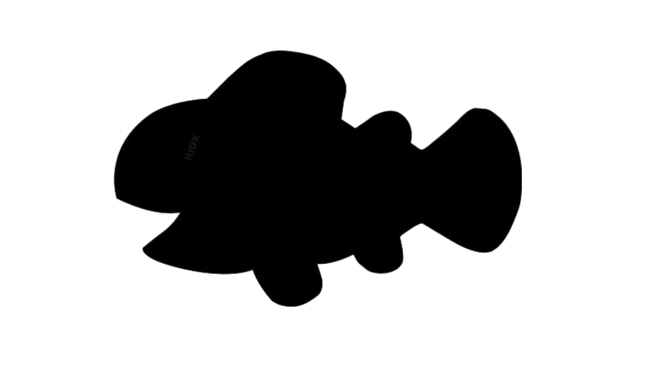 Transparent Laughing Fish Silhouett Png Image