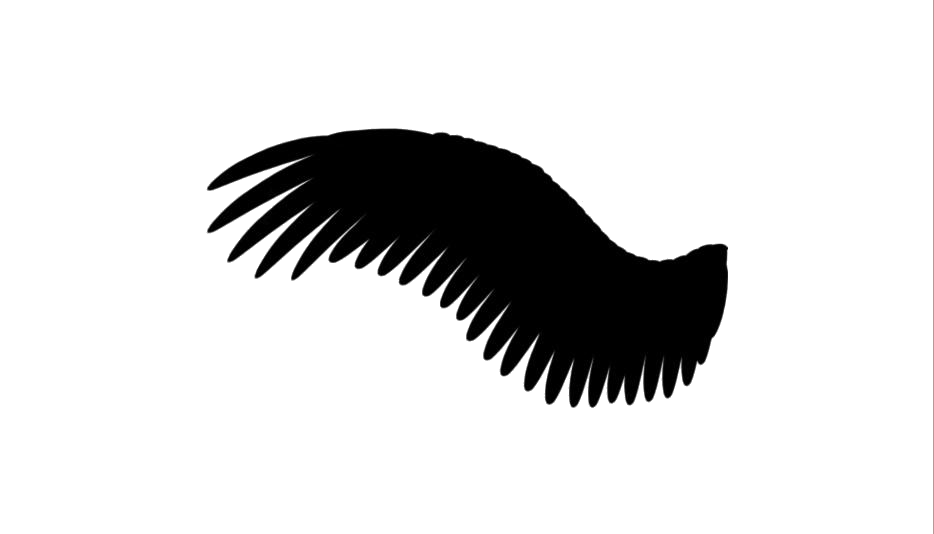 Transparent Wing Clipart, Wing Png Image