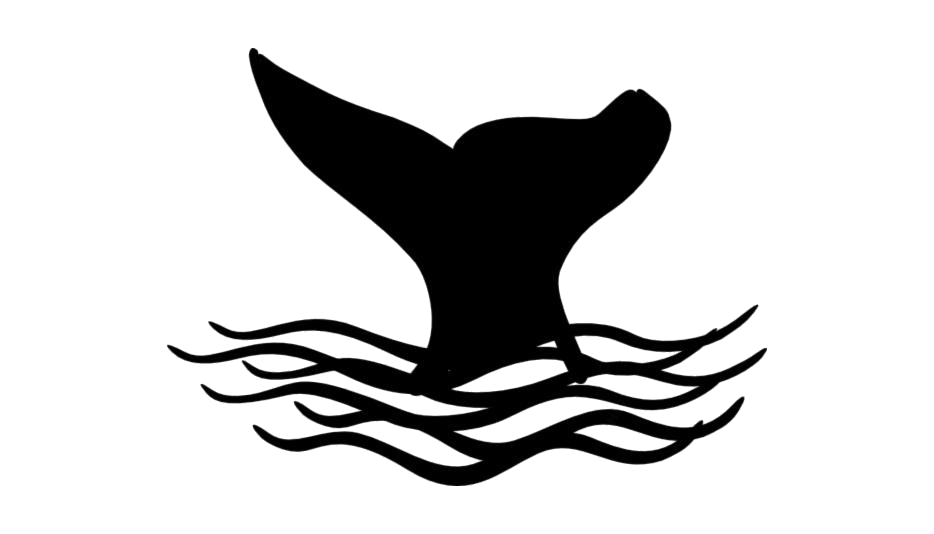 Whale Tail Png Full Hd With Transparent Bg