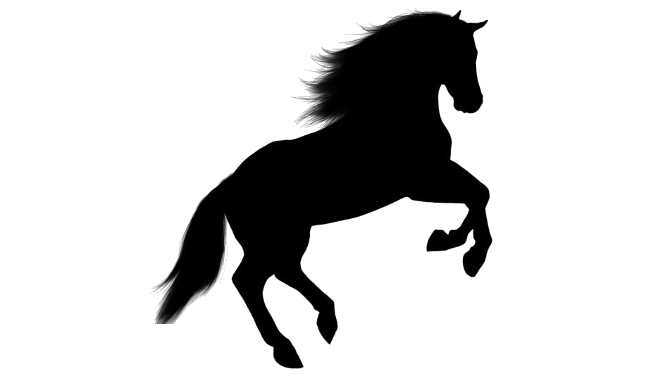 Wild Horse Jumping Silhouette Png